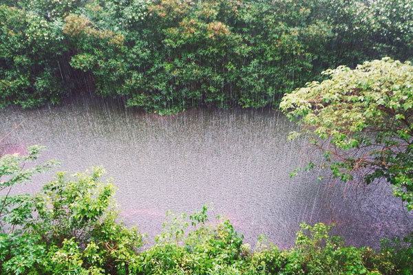 Photo of a Spring rainstorm on a wooded river